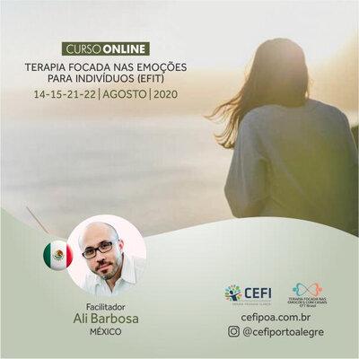 Terapia Focada nas Emoções para Individuos (EFIT)