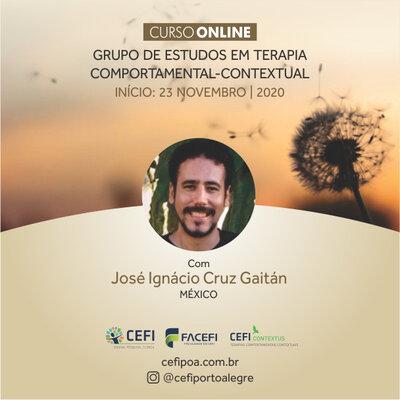 GRUPO DE ESTUDOS EM TERAPIA COMPORTAMENTAL-CONTEXTUAL ONLINE  NÚCLEO CONTEXTUS – CEFI